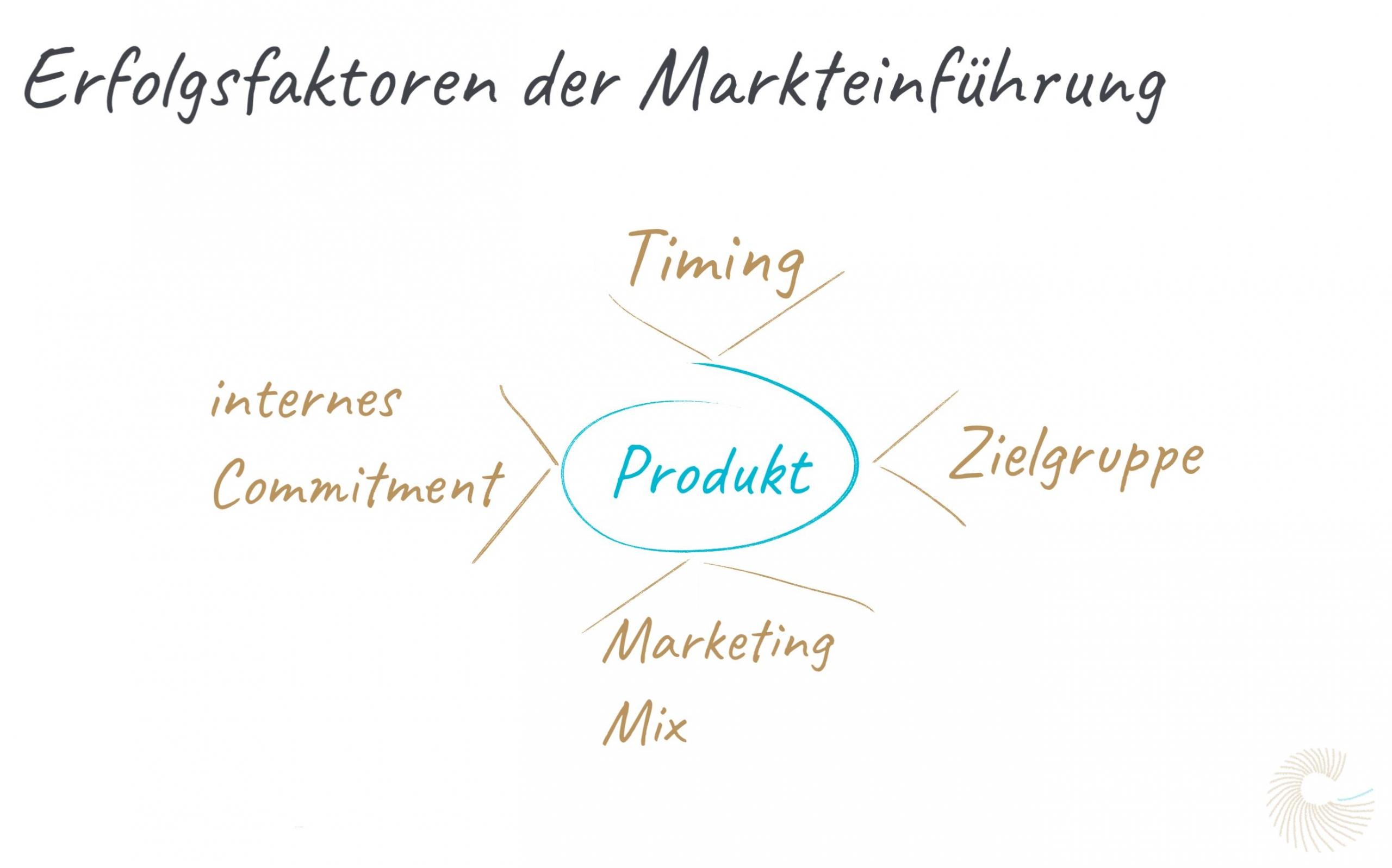 Erfolgsfaktoren der Markteinführung